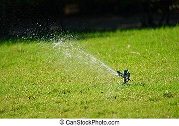 Sprinkler grass working system, working on the field in the garden.
