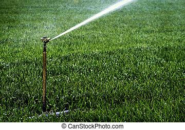 Sprinkler Irrigation System Spraying Water on Field