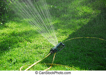 Sprinkler lawn - Sprinkler watering grass