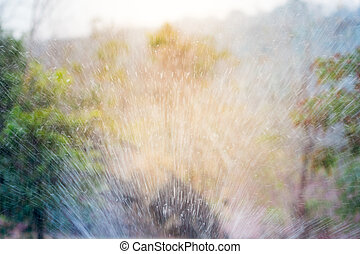 sprinkler of automatic watering-color effect