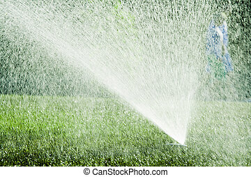 Sprinkler - Water spraying from a lawn sprinkler with people...
