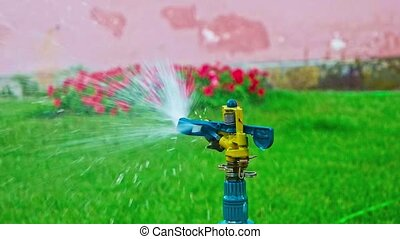 Sprinkler system working