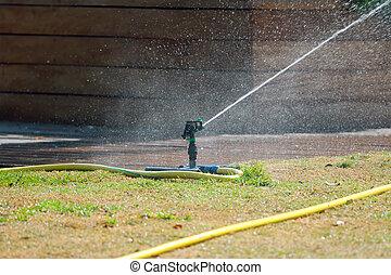 Sprinkler watering grass.