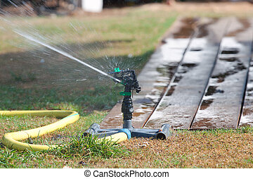 Sprinkler watering grass.