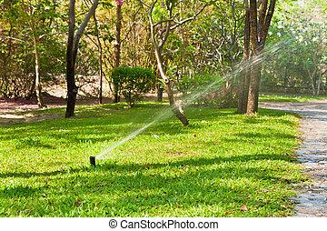 sprinkler watering lawn and garden