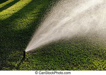 sprinler, gramado, ao ar livre, jardim