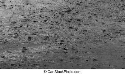 Spritzen, Regen, Straße