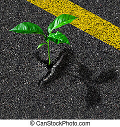 Sprout from asphalt hole