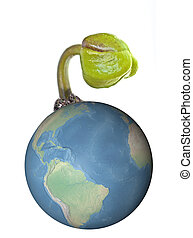 Sprout from world