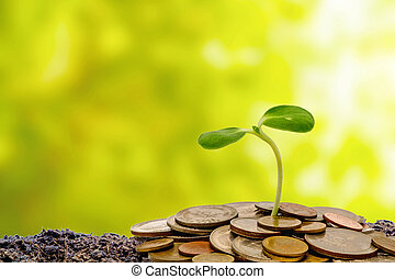 Sprout growing from soil with money coins on blurred green natural background