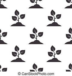 sprout icon on white background