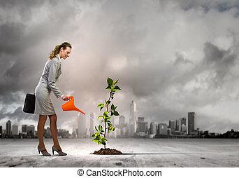 sprout, kvinde, vanding, firma