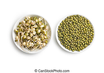 Sprouted and dried mung beans on white background