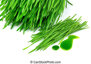 Sprouted wheat and wheatgrass juice isolated on white ...