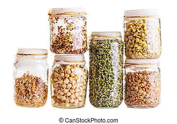 sprouting, groeiende, anders, pot, zaden, stapel, glas