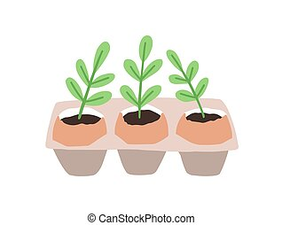 Sprouts or seedlings growing in pots or planters isolated on...