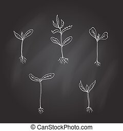 Sprouts young plants. Hand drawn