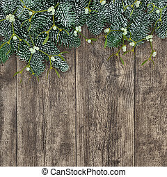 Spruce Fir and Mistletoe Background