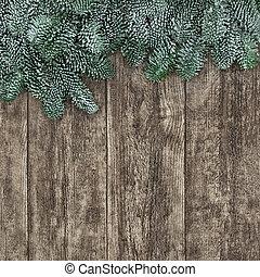 Spruce Fir Background