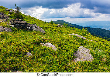 Carpathian mountain landscape - spruce tree among boulders...