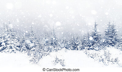 Spruce Tree foggy Forest Covered by Snow in Winter...