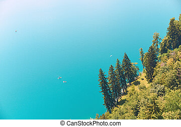 Spruce trees on the shore of a mountain lake with turquoise water