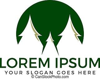 Spruce trees vector logo design.