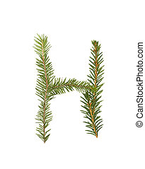 Spruce twigs forming the letter 'H' isolated on white