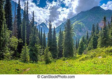 Karakol national park, Kyrgyzstan