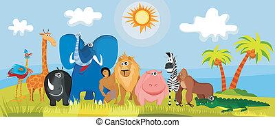 sprytny, afryka, zwierzęta
