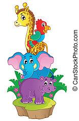 sprytny, afrykanin, zwierzęta, temat, wizerunek, 3