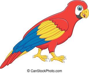 sprytny, ara, przedstawianie, ptak, rysunek