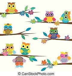 sprytny, drzewo, rysunek, gałąź, sowy