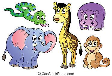 sprytny, komplet, zwierzęta, afrykanin