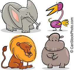sprytny, komplet, zwierzęta, rysunek, afrykanin