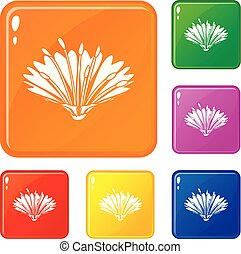 sprytny, kwiat, ikony, komplet, wektor, kolor