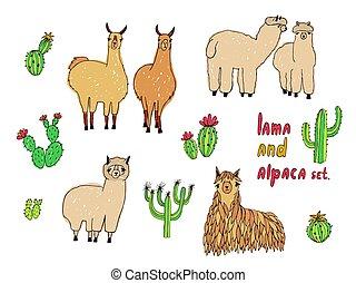sprytny, lama, alpaka, i, kaktusy, set., ręka, pociągnięty, barwny, wektor, illustration.