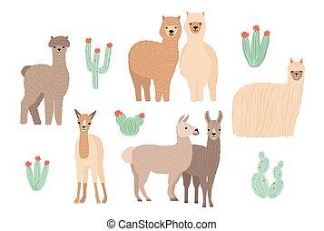 sprytny, lama, alpaka, i, kaktusy, set., ręka, pociągnięty, rysunek, barwny, wektor, ilustracja