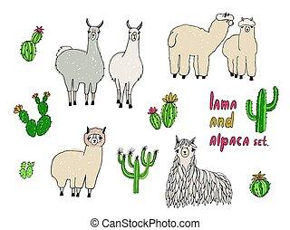 sprytny, lama, alpaka, i, kaktusy, set., ręka, pociągnięty, wektor, ilustracja