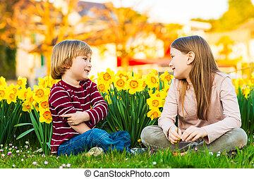 sprytny, mały, jego, siostra, wielki chłopiec, park, dwa, żółty, żonkile, zachód słońca, między, kwiaty, dzieciaki, interpretacja