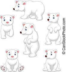 sprytny, niedźwiedź, rysunek, zbiór, polarny