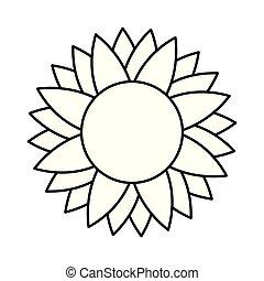 sprytny, odizolowany, słonecznik, ikona