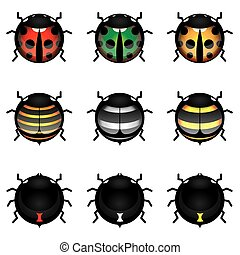 sprytny, owad, zbiór