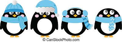 sprytny, pingwin, komplet, odizolowany, na białym, (, błękitny, )