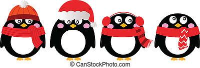 sprytny, pingwin, komplet, odizolowany, na białym