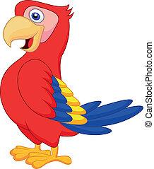 sprytny, ptak, papuga, rysunek