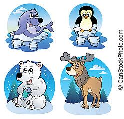 sprytny, różny, zwierzęta, zima