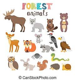 sprytny, styl, komplet, zwierzęta, woodland., las, vector., ...