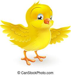 sprytny, szczęśliwy, mały, żółte kurczątko