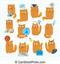 sprytny, szkoła, koty, motywy, studing